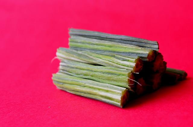baqueta moringa oleifera
