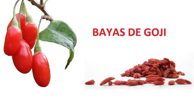 bayas-de-goji-como-son