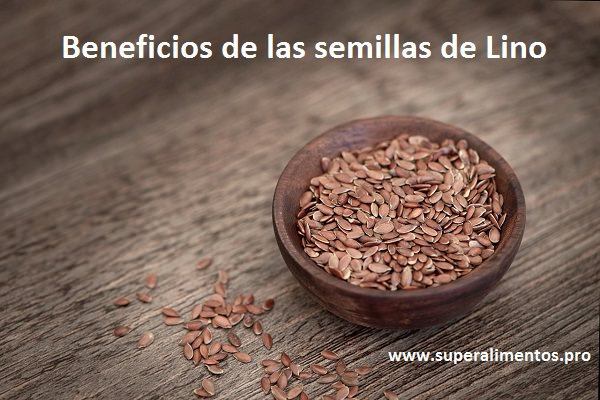 semillas-linaza