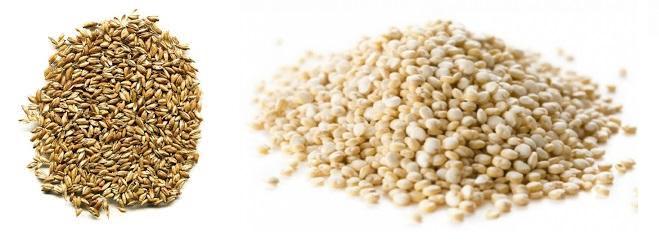 superalimentos semillas espelta y quinoa