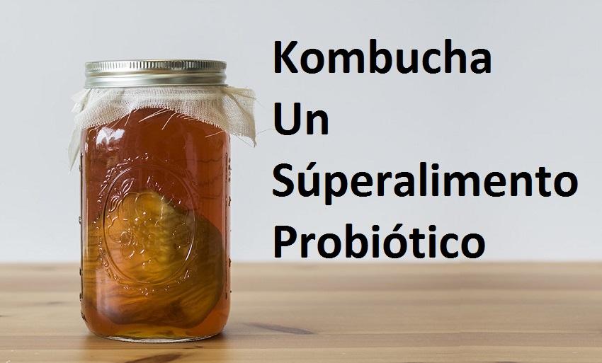 Kombucha superalimento probiótico