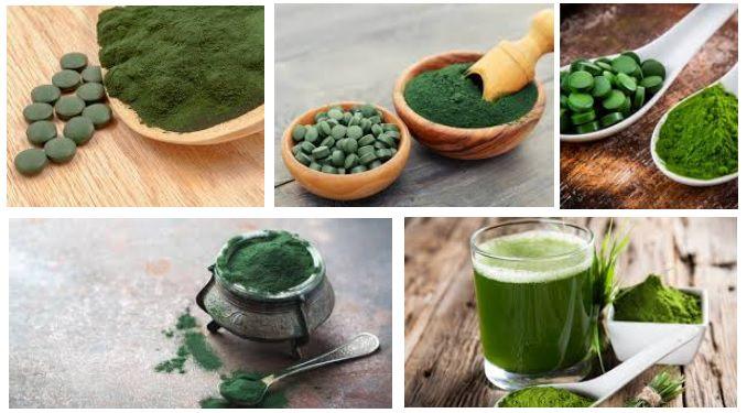 Comprar alga espirulina superalimentosPRO