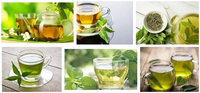 Comprar te verde superalimentosPRO