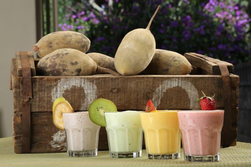 baobab alimento