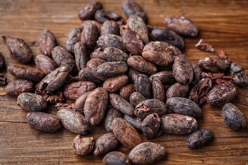 grano cacao