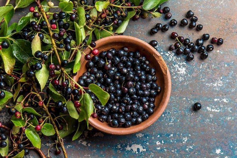 Maqui berry superalimentos pro