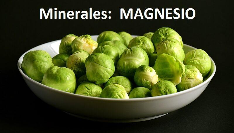 Magnesio-Minerales-Mis-suplementos-Online