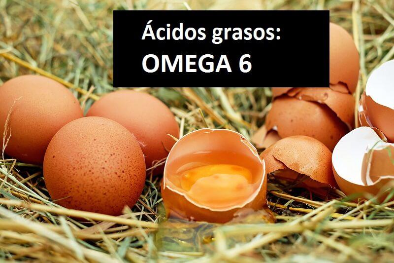 Omega-6-huevos-acidos-grasos-Mis-suplementos-Online